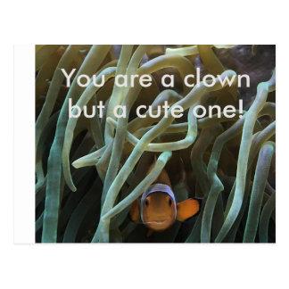 Funny clown fish postcard