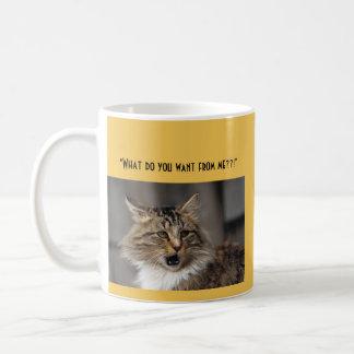 funny coffee mug: funny cat/angry cat basic white mug