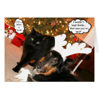 Funny Collie & Black Cat Christmas Card 2