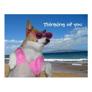 Funny Corgi Bikini Postcard