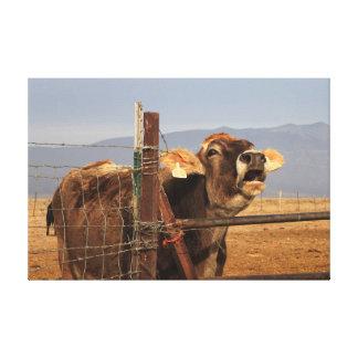 Funny Cow Art Canvas Print