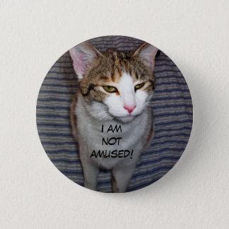 Funny cranky cat 6 cm round badge