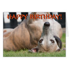 Funny cute greyhound greetings card