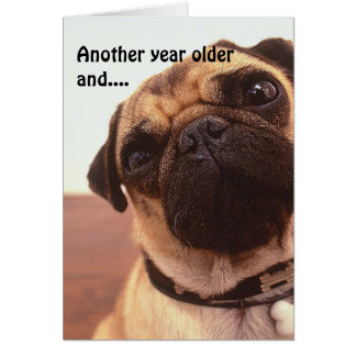 Funny Cute Humorous Pug Dog Birthday Card