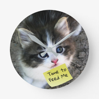 FUNNY! Cute Kitten with Customizable Text Round Clock