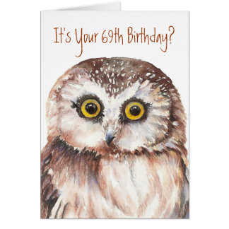 Funny-Cute Little Owl, 69th Birthday Card