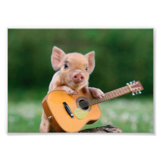 Funny Cute Pig Playing Guitar Photographic Print