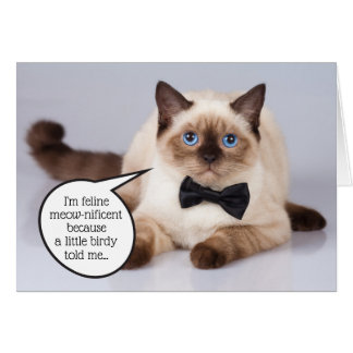 Funny dapper cat with bowtie customisable birthday card