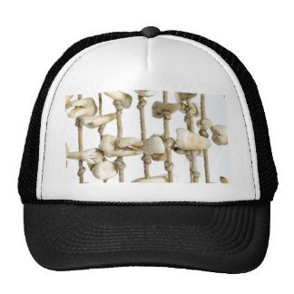 Funny Dental Photography Extracted Teeth Dentist Cap