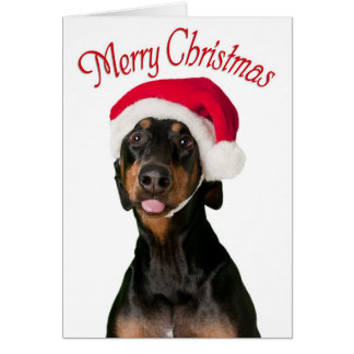 Funny Doberman dog Christmas cards
