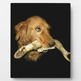 Funny Dog Carrying Horse Teeth Bone Plaque