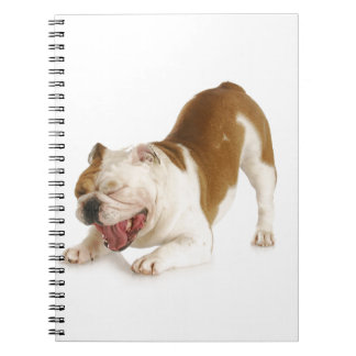 funny dog spiral note book