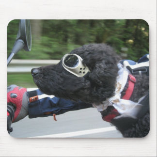 Funny Dog Riding a Motorcycle Mouse Pad