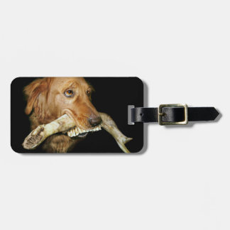Funny Dog with Horse's Teeth Bone Luggage Tag