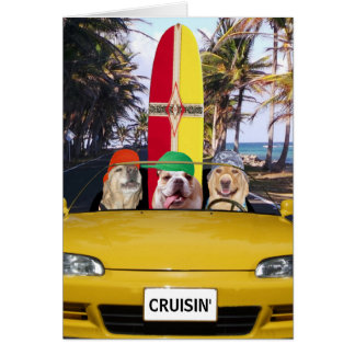 Funny Dogs Cruisin' Surfer Birthday Card