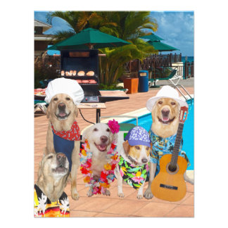 Funny Dogs Customizable Pool Party BBQ Invitation