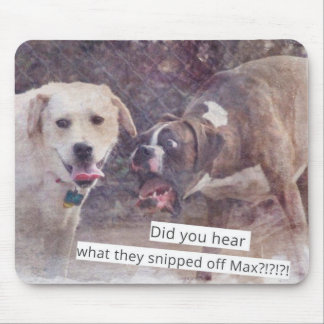 Funny dogs freak out mouse pad