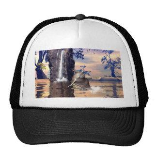 Funny dolphin cap