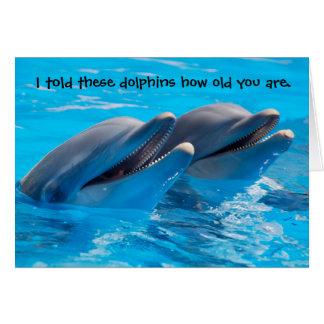 Funny Dolphins Birthday Card