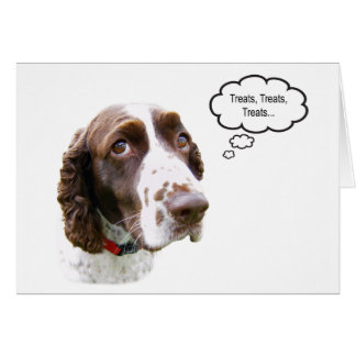 Funny English Springer Spaniel Treat Card