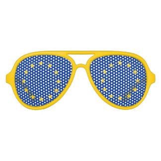 Funny European Union flag party shades Fun glasses