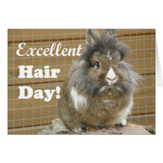 """Funny """"Excellent Hair Day"""" for Rabbit. Card"""
