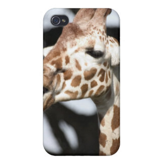 Funny faced reticulated giraffe, San Francisco Covers For iPhone 4