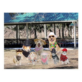 Funny Family Reunion Postcard