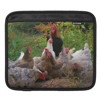 Funny Farmyard Chickens Horizontal iPad Sleeve