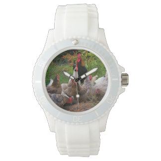 Funny Farmyard Chickens Rooster Sporty Watch