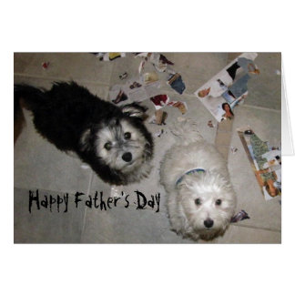 funny Father's Day Havanese Puppies Card