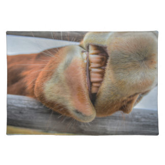 Funny Friendly Horse Muzzle and Teeth Placemat