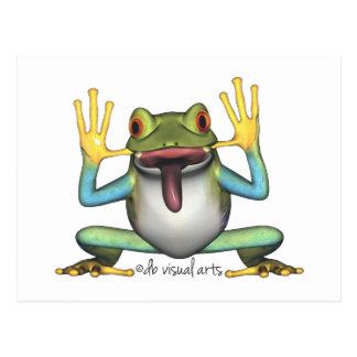 Funny Frog postcard post card
