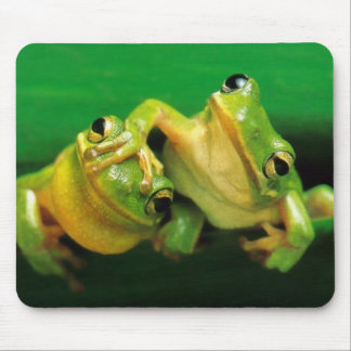 Funny Frogs Mouse Pad