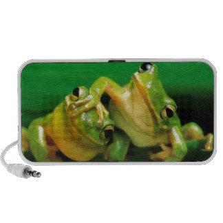 Funny Frogs Notebook Speaker