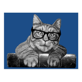 funny geek cat gifts postcard