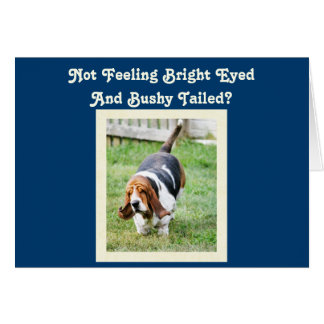 "Funny ""Get Well"" Card w/Cute Basset Hound & Nap"