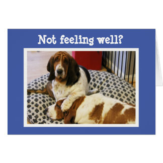 """Funny """"Get Well"""" Card w/Cute Basset Hounds"""