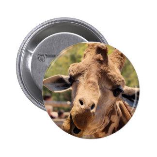 Funny giraffe 6 cm round badge