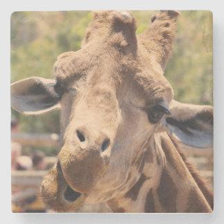 Funny giraffe stone coaster
