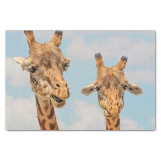 Funny Giraffes Tissue Paper