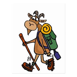 Funny Goat Hiking Art Postcard