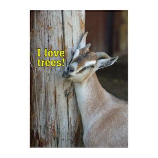 Funny Goat I Love Trees Acrylic Wall Art