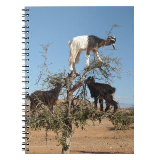 Funny goats in a tree notebooks