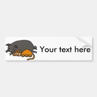 Funny Grey Pot Bellied Pig Sleeping with Orange Ca Bumper Sticker