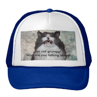 Funny Grumpy Cat Hat