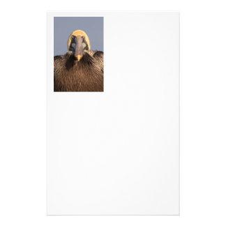 Funny Grumpy Pelican Stationery