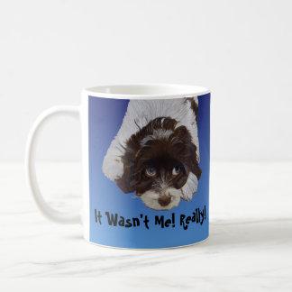 Funny Guilty Cocker Spaniel Coffee Mugs
