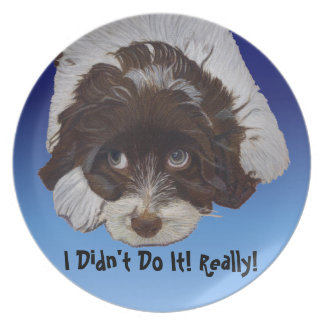 Funny Guilty Cocker Spaniel Plate