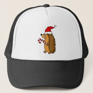 Funny Hedgehog in Santa Hat Christmas Art